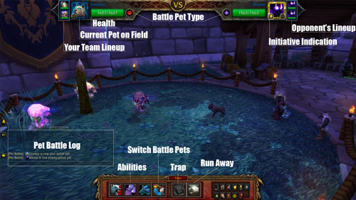 Pet-battle-layout