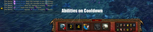 pet-battle-used-abilities